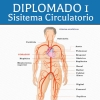 Diplomado 1 [Video-2]